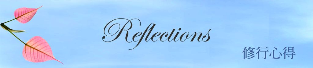reflectionnew